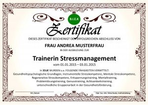 Zertifikat Trainer Stressmanagement