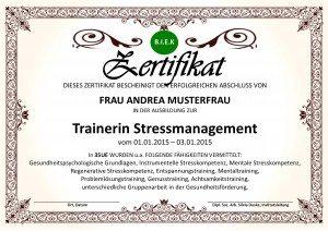 Zertifikat Trainer Stressmanagement