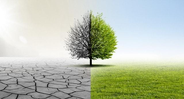 Resilienztraining - seien Sie dabei